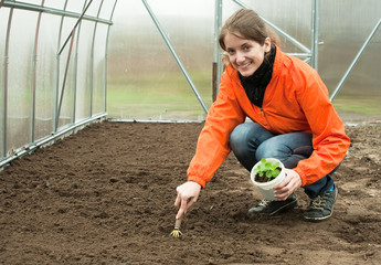 woman resetting  sprouts