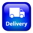 DELIVERY Button (transport carrier service home express free)