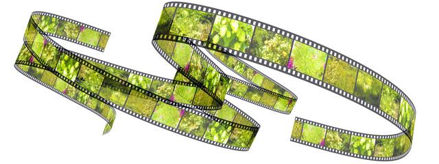 Segment color film rolled up