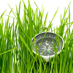 compass in green grass isolated on white background