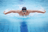 Fototapete Swimming - Schmetterling - Individuell
