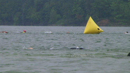 Swimmers Racing In Triathlon 04