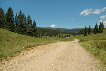 Winding dirt lane ascending a mountain