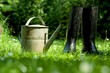 Rubber boots with watering can on grass - spring concept