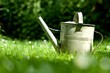 Watering can on grass - spring concept