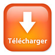 Bouton TELECHARGER (téléchargement downloader web internet)
