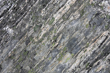Gneiss rock in New Zealand