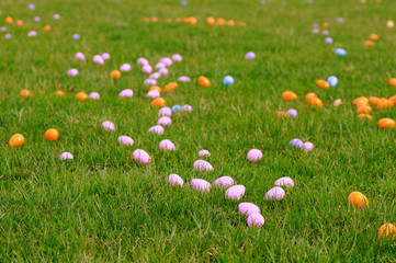 Scattering of Easter eggs on lawn