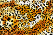 crazy leopard wallpaper