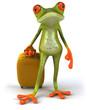 Grenouille et valise