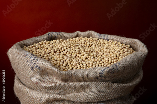 Burlap bag filled with soy beans