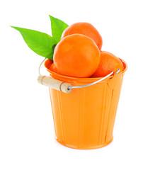Ripe fresh mandarins