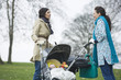 Two mothers in park with babies in strollers