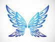 Light Blue Wing