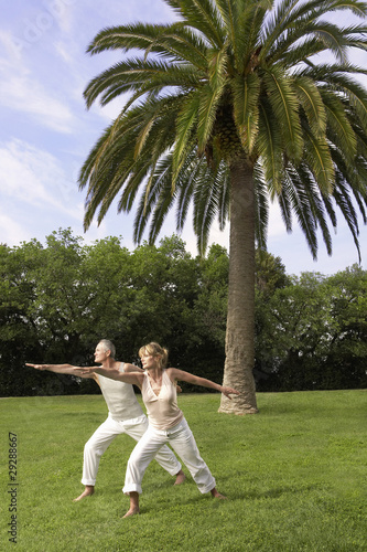 Middle-aged couple doing tai chi in park