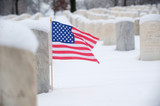 US flag on veteran grave poster