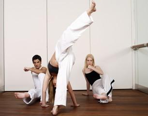 Capoeira combinations