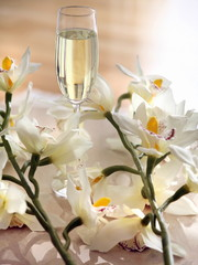 Glass of champagne surrounded by flowers