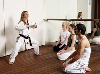 Students observing Tae Kwon Do - Dantae demonstration