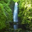 obraz - Cranny Falls, Coun...