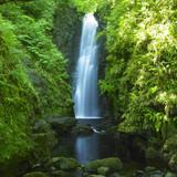 Fototapety Cranny Falls, County Antrim, Northern Ireland