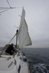 vela nautica