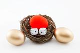 Risking the Nest Egg poster