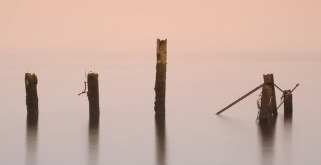 Posts in calm water