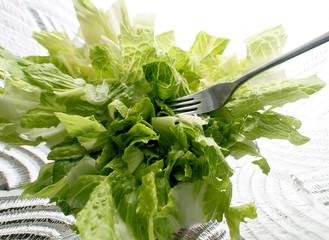 Green Salad Abstract