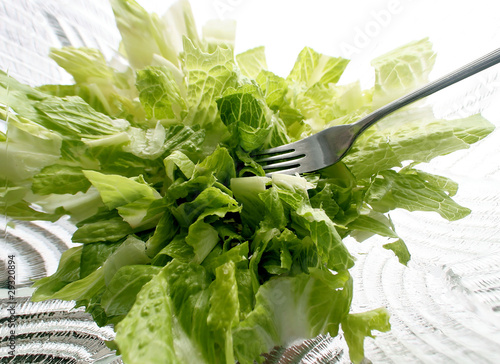 Green Salad Abstract