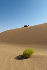 Grüne Wüste mit Auto