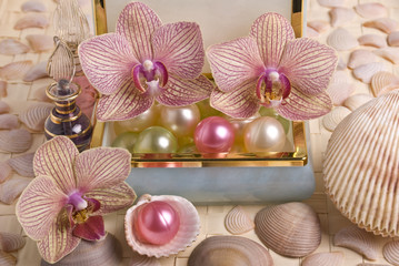 Bath accessories and orchid