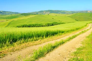 Toskana Huegel  - Tuscany hills 44