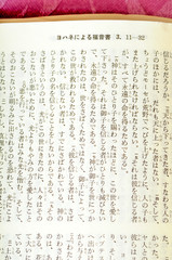 Japanese Bible open to John 3:16 (sixth column from right)