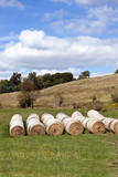 Beautiful pasture with baled hay