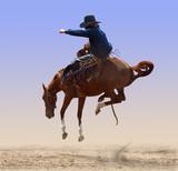 Airborne Rodeo Bronco