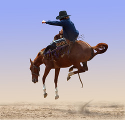 Airborne Rodeo Bronco