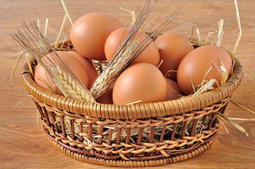 Cestino di uova