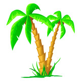 Cartoon tropical palm isolated on white background