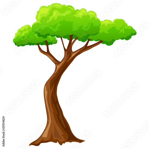 Cartoon isolated tree on white background