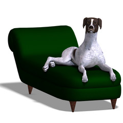 German Short Hair Dog. 3D rendering with clipping path and