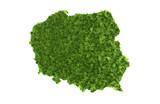 Fototapety Polen Rasenkarte