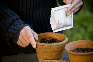A man planting seeds in a pot
