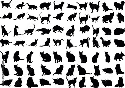 Vector illustration of various cats silhouettes