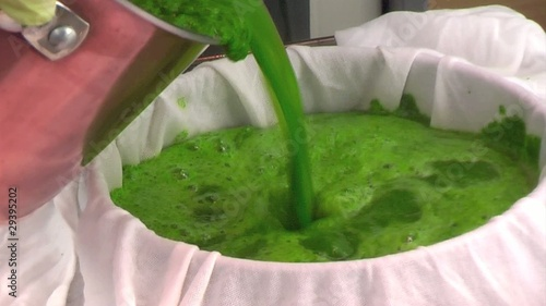 spinach juice as food color