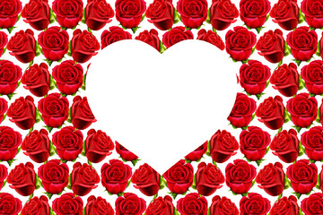 Valentine rose on a red roses pattern background