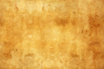 Highly detailed grunge paper with space for your text or image.
