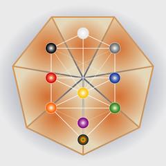 Symbole Arbre de Vie avec Heptagone - Multicolore