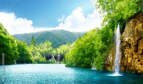 Fototapeta krzew - kaskada - Jezioro / Staw