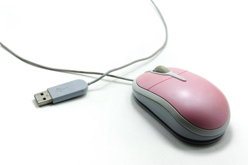 pink computer mouse with cable on white background